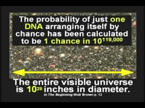 Evolution-No-Chance-Versus-God-Creation-Certain.jpg
