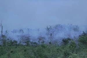 O fogo ameaça destruir completamente a floresta dos Awá isolados (foto de arquivo).