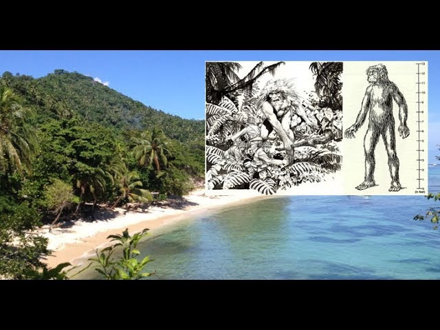 Does a Giant Race Still Exist in the Solomon Islands?  Sddefault