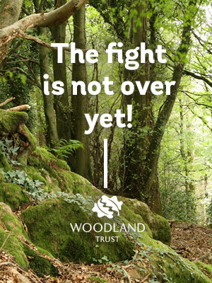The fight is not over yet - Woodland Trust