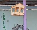 Конкурс «Помогаем птицам»