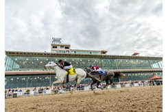 Silver Dust wins the Mineshaft Stakes at Fair Grounds Race Course
