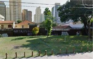 moradores-são-paulo-unem-criar-minifloresta-urbana-cidade-3