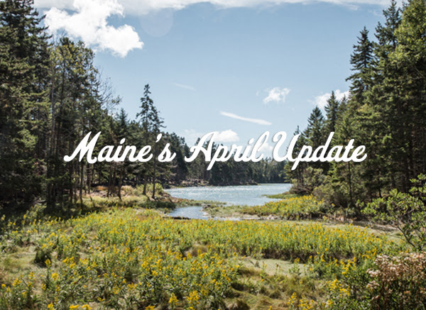 Maine's April Update