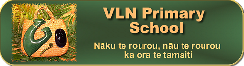 VLN Primary School