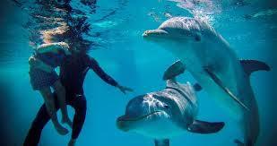 """O adestrador de golfinhos Adrian Calderon ajuda o menino Javier Gonzalez a tocar no animal durante sessão de """"golfinhoterapia"""" no Aquário de Havana"""