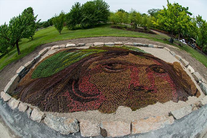 Grass                                                          sculpture                                                          competition
