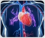 Decorated cardiac stem cells could provide enhanced treatment for heart attacks
