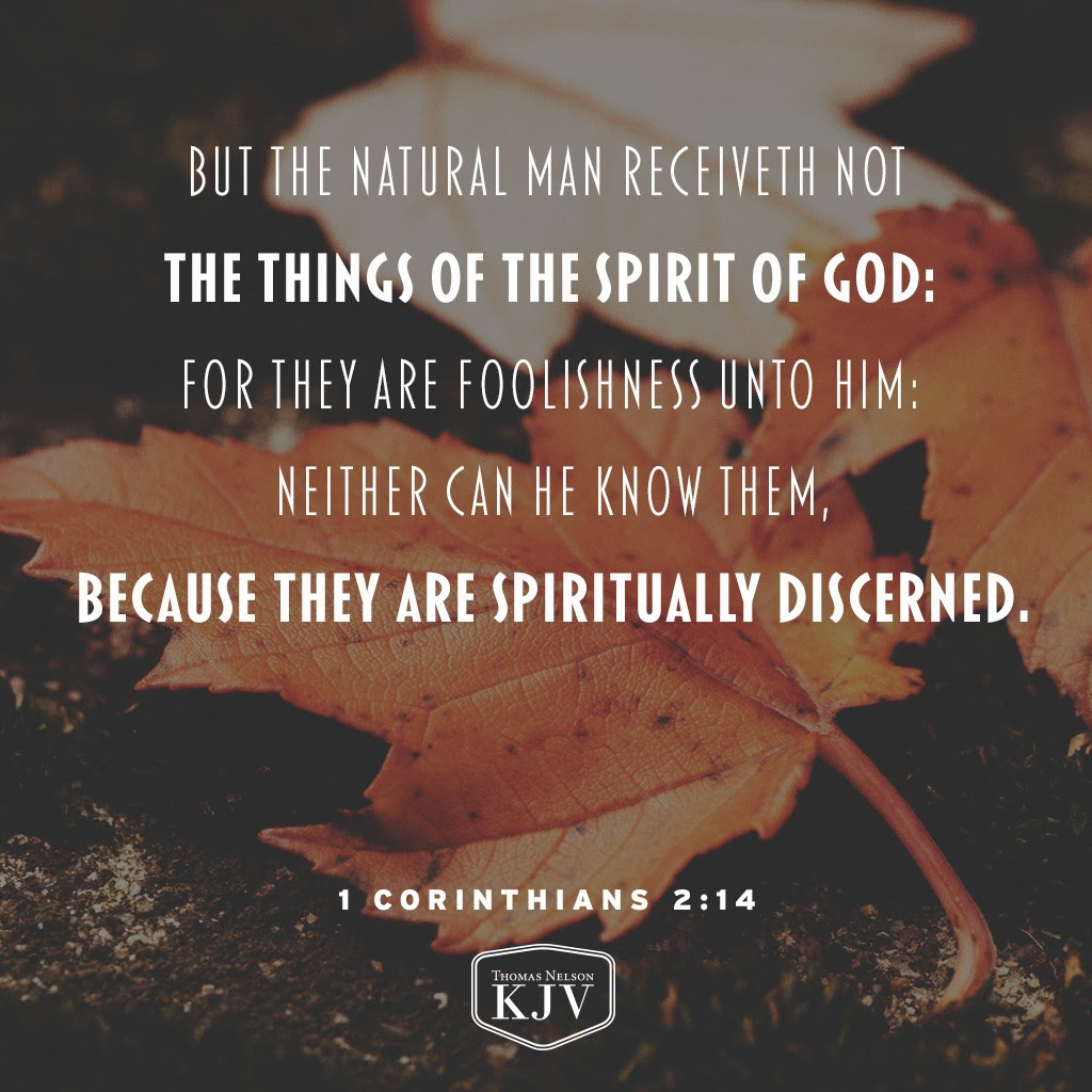 14 But the natural man receiveth not the things of the Spirit of God: for they are foolishness unto him: neither can he know them, because they are spiritually discerned. 1 Corinthians 2:14
