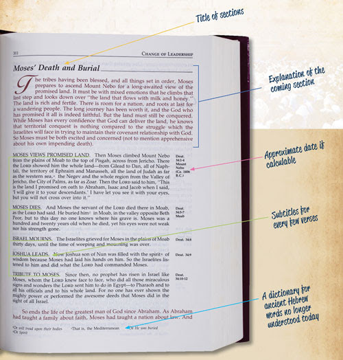 0218 - Narrated - Bible - Infographic