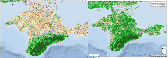 Unique Crimean ecosystem is subject to extinction. A significant decrease in vegetation was recorded between 2016 (right) and  2018 (left)