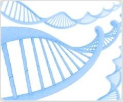 Advanced genetics study of TB bacteria uncovers virulent 'Beijing lineage' strain among young adults