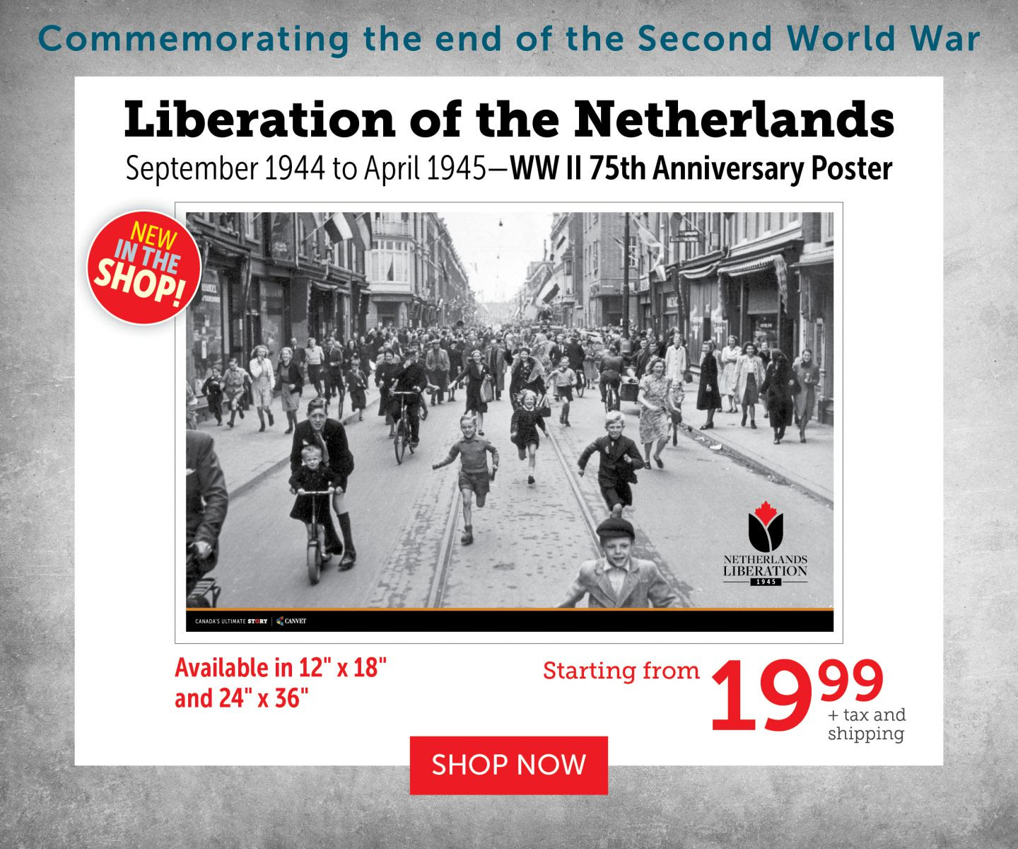 Liberation of the Netherlands Poster