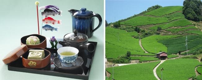 「四季おりおり『八十八夜』」                 「和束の茶畑」