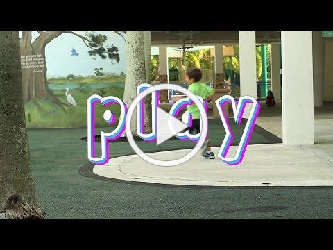 Play (2015) with Peter Gray and Ken Robinson