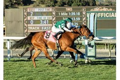 Quick (outside) edges Hermaphrodite by a nose to win the Astra Stakes at Santa Anita Park