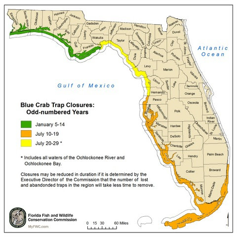 Small blue crab trap removal map