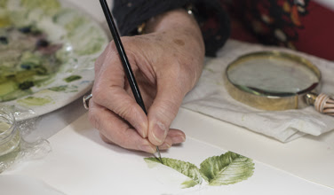 Image of a hand drawing a leaf