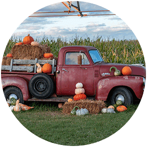 Vintage red pick-up truck with fall pumpkin display