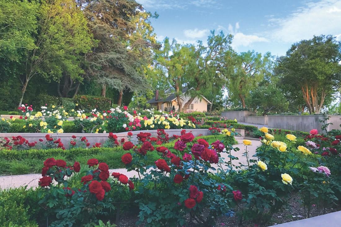 PN-Gardens_2 rose garden.jpg