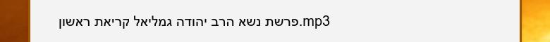 פרשת נשא הרב יהודה גמליאל קריאת ראשון.mp3