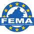 FEMA's website