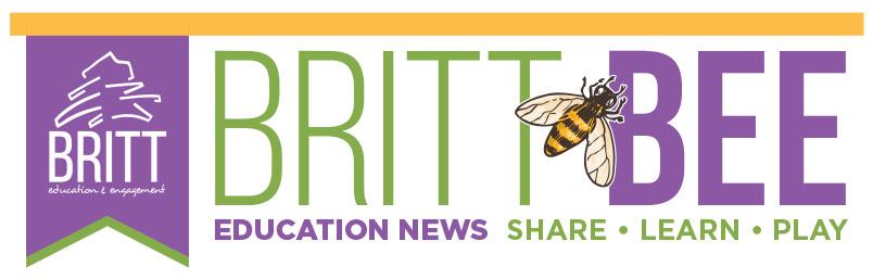 Britt Bee Education News