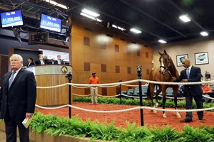 An Into Mischief filly consigned as Hip 360 sells for $1.8 million  at the Fasig-Tipton Midlantic Sale