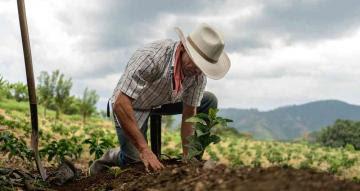 Agricultura Orgánica: Un sistema productivo innovador que promueve la inclusión de género y juventud en América Latina y el Caribe