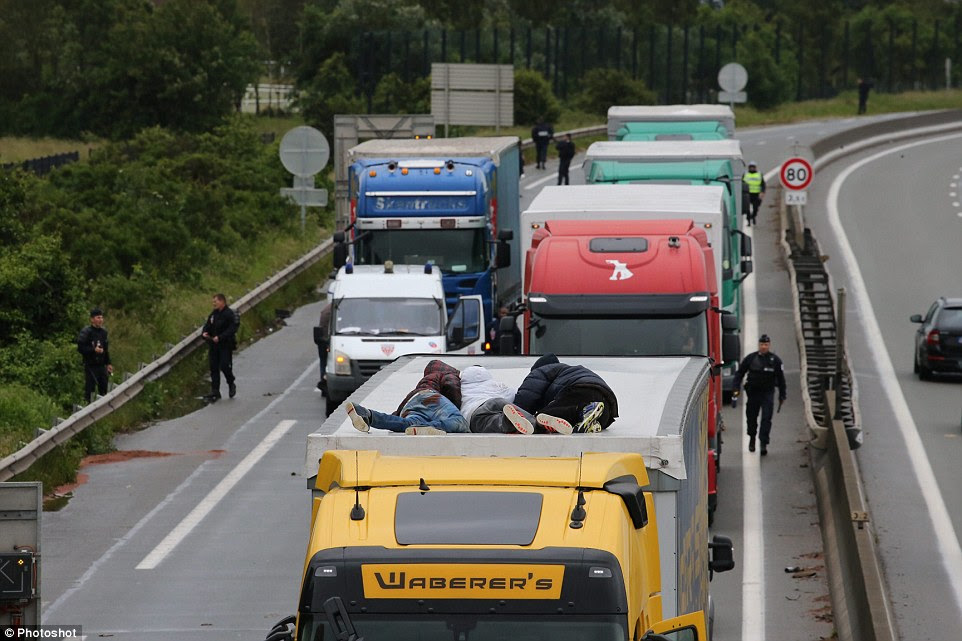Stowaways: Three migrants risk their lives clinging to the roof of the lorry as it prepares to move. French police seem oblivious to the latest attempt to sneak into Britain