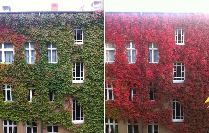 http://www.boredpanda.com/before-and-after-autumn-photography/?image_id=same-place-different-season-before-after-4.jpg