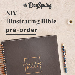 NIV Illustrating Bible - Dark Grey