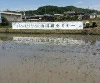 Sake Rice August 2016 A