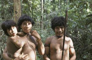 Muitos Awá vivem isolados e são extremamente vulneráveis a doenças e outras ameaças trazidas por invasores.