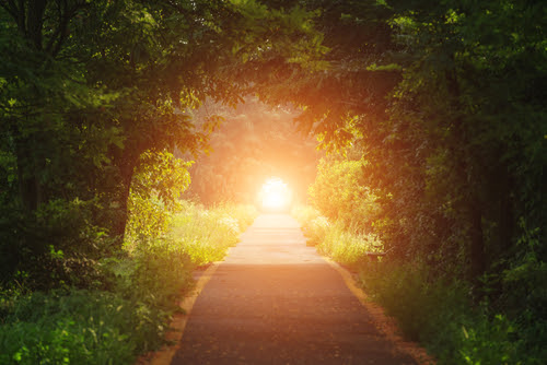 green tunnel_ road and sun