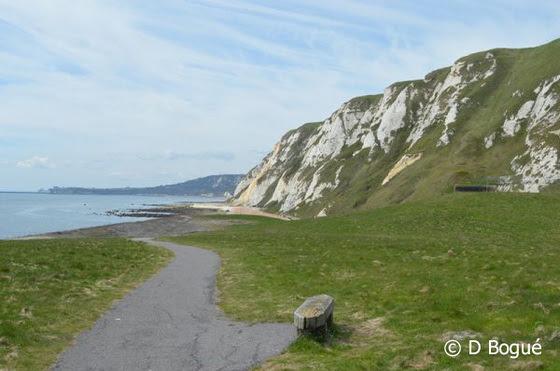 Samphire Hoe and Cliffs - Copyright D Bogue