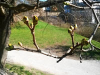 aktualne-jaro