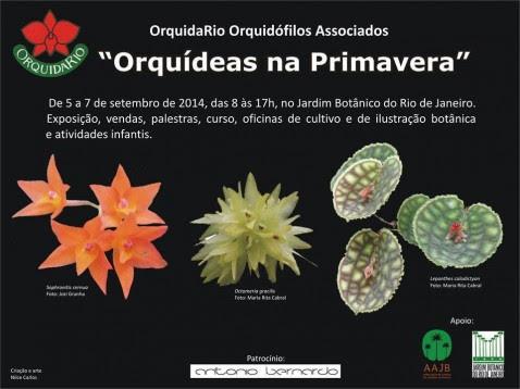 Cartaz - OrquidaRio - Orquideas da Primavera 2014