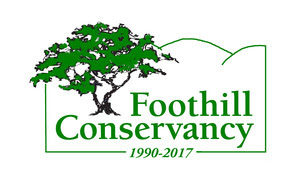 2017 FC logo green trans
