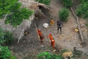 Se piensa que los indígenas aislados de Perú se han visto presionados a cruzar la frontera hacia Brasil como consecuencia de la desenfrenada tala ilegal que azota su selva (imagen de 2008).