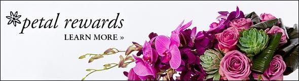 Robertson's Flowers