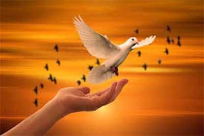 peace01_400_01