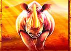 Большой Rhino