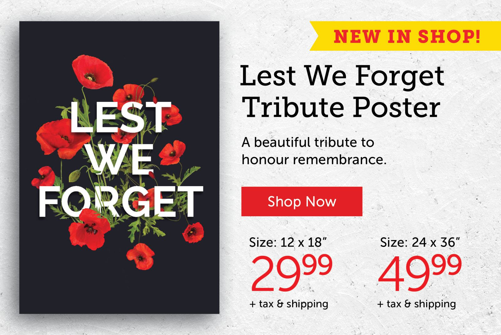 Lest We Forget Tribute Poster!