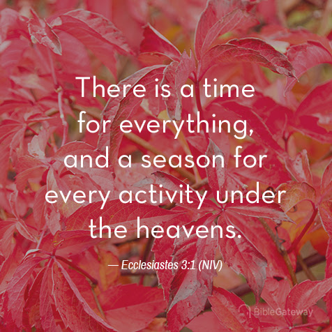 Read Ecclesiastes 3:1 on Bible Gateway.