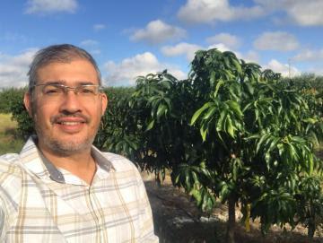 Investigación, pilar fundamental para la sustentabilidad de la Industria del Mango
