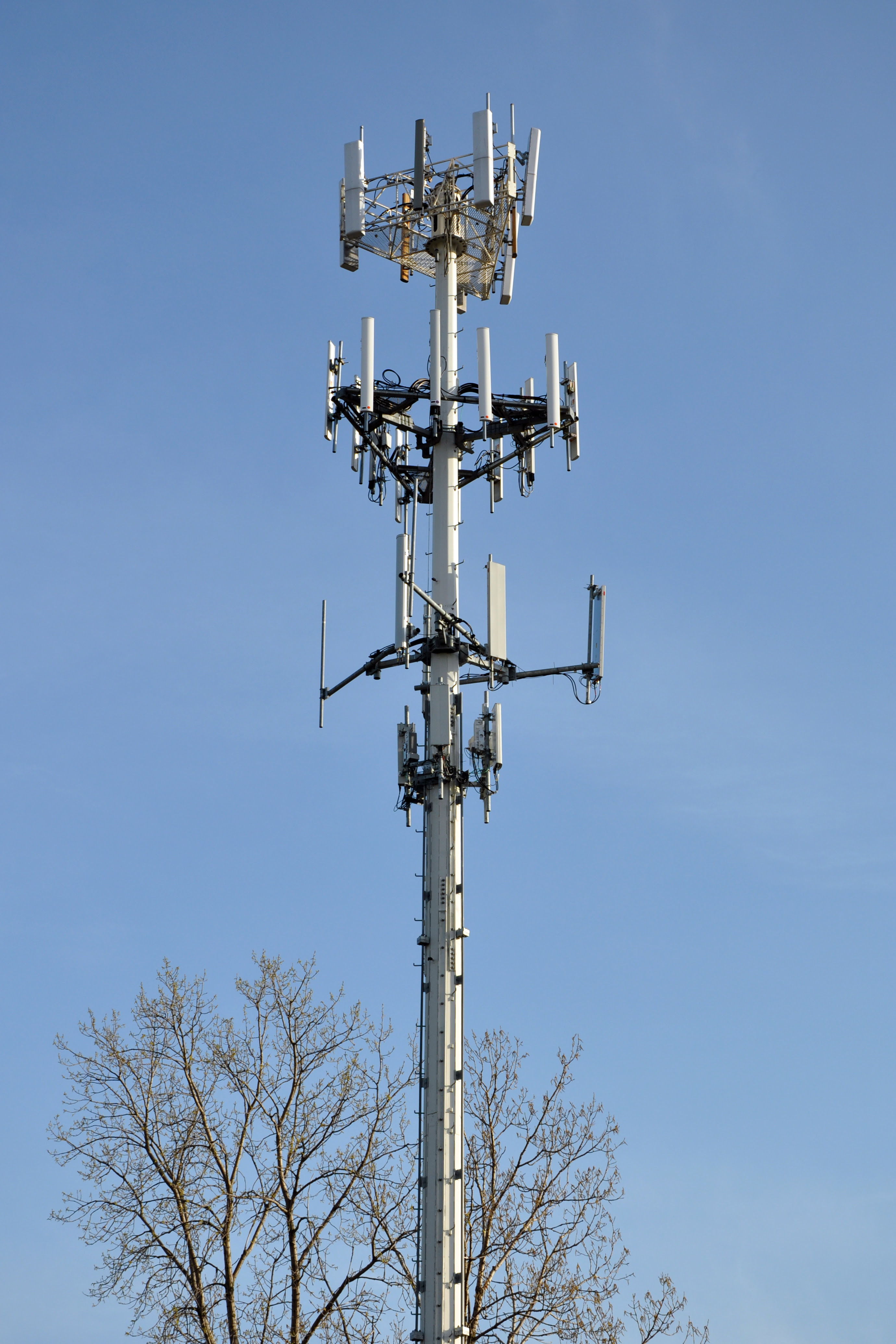 http://upload.wikimedia.org/wikipedia/commons/2/2d/Cell_Phone_Tower.jpg