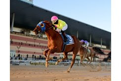 Pete's Play Call wins the Gravesend Stakes at Aqueduct Racetrack