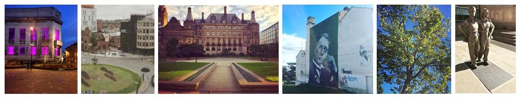 Love Sheffield, Luv