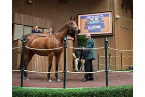 Lady Eli tops the Keeneland November Sale at $4.2 million as one of eight to sell for over seven figures